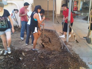 Torrance High School Gets New Rain Garden
